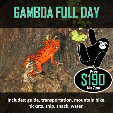 GAMBOA FULL DAY