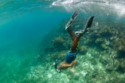 Haciendo-snorkel-en-un-arrecife-de-coral
