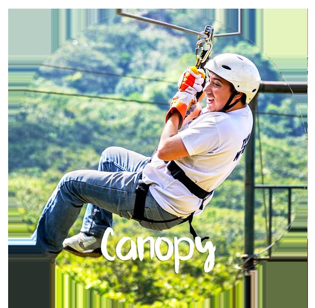 canopy1-ligero