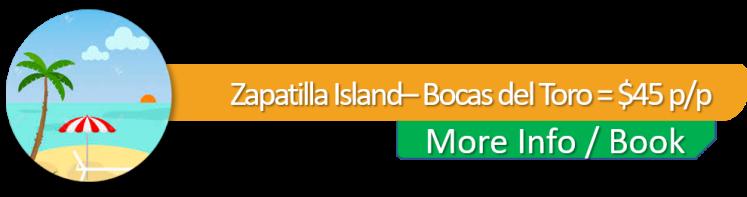 BOTON- ZAPATILLA